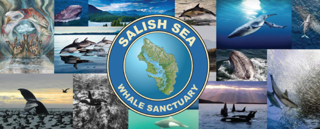 Salish Sea Whale Sanctuary
